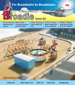 Image of Issue 020 of The Broadie